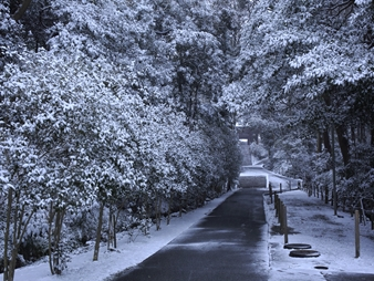 比企谷の冬